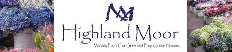 Highland Moor products